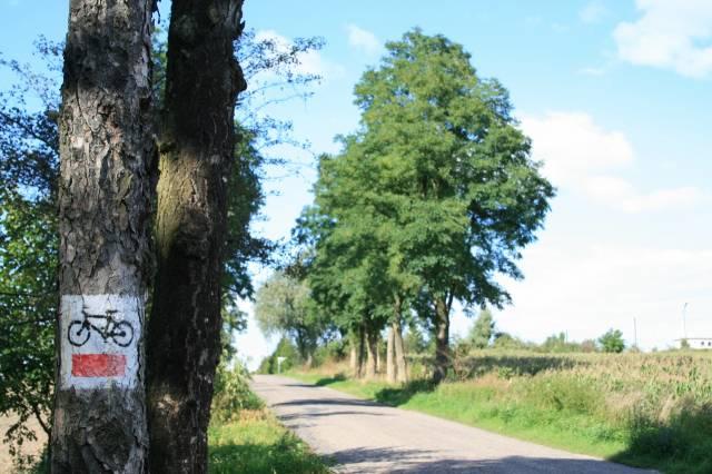 Pałuki znakowane trasy